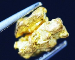 0. 51 Grams  AUSTRALIAN  Gold  Nugget LGN 1311
