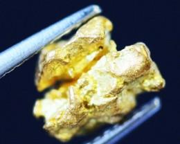 0. 51 Grams  AUSTRALIAN  Gold  Nugget LGN 1311