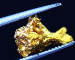 0.46 Grams  AUSTRALIAN  Gold  Nugget LGN 1312