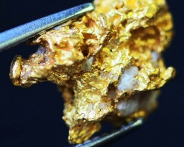 1.37 Grams  AUSTRALIAN  Gold  Nugget LGN 1323