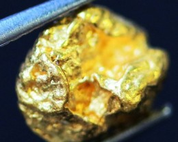 0. 55 Grams  AUSTRALIAN  Gold  Nugget LGN 1326