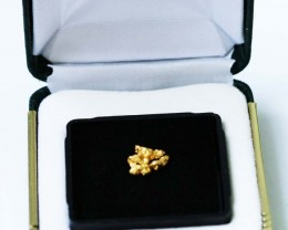 0. 85 Grams  Australian  Gold  Nuggest in Display case LGN 1329