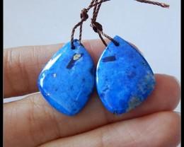 27ct Natural Lapis Lazuli Earring Beads