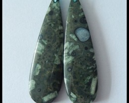 41Ct Natural Plant Fossil Earring Beads