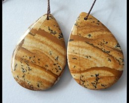 33ct Natural Picture Jasper Earring Beads