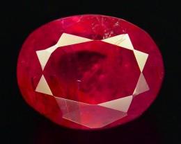 Afghan Rubies