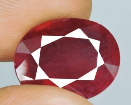 Wonderful! NATURAL RUBY LUSTER BLOOD RED RARE 10.95 Ct OVAL CUT GEM GEMSTON