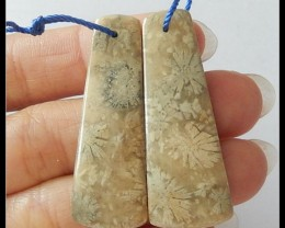 42ct Natural Coral Fossil Earring Beads