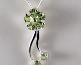 Sterling Silver Necklace & Peridot Pendant  ( TC-N75
