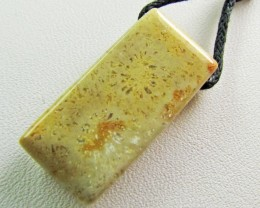 24 CTS CORALSTONE ON NECKLACE MJA 483