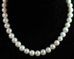 291 CTS PEARL NECKLACE 11863