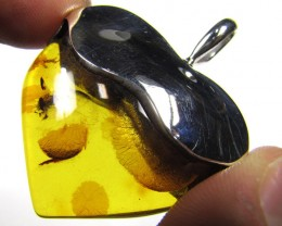 BALTIC AMBER LARGE HEART PENDANT  59.25 TCW    MYG 455