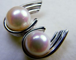 STUNNING 18 K WHITE GOLD  PEARL EARRINGS     SG 955