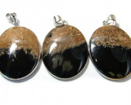 3 NATURAL PALM  ROOT FOSSIL  SET IN  PENDANT    AAA2754