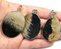3 NATURAL PALM  ROOT FOSSIL  SET IN  PENDANT    AAA2755