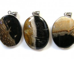 3 NATURAL PALM  ROOT FOSSIL  SET IN  PENDANT    AAA2759