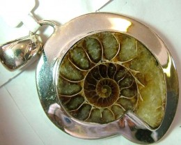 FOSSIL JEWELRY /SILVER PENDANT 160  CTS TBG-84