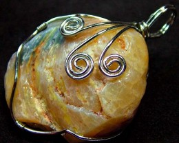 SHELL FOSSIL PENDANT 79.40 CTS [GT729 ]