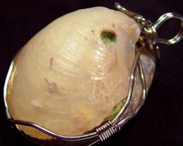 NATURAL SHELL FOSSIL PENDANT 95.65 CTS [GT735 ]