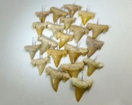 RE SELLERS  PARCEL 20 SHARK TEETH PENDANTS RT 2221