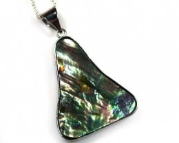 NATURAL PAUA SHELL 48.20 CARATS   AAA33