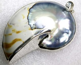 BEAUTIFUL SHELL SILVER SHELL PENDANT 140 CTS  ADJ-150
