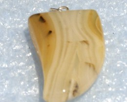 Fabulous Banded Agate Tooth Pendant 30 x 18 mm BAP-34