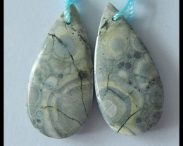 28.5ct Natural Orbicular Rhyolite Bird's Eye Earring Beads
