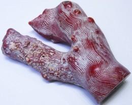 820Cts Natural red coral specimen   BU1714