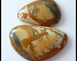 2Pcs Natural owyhee Jasper Cabochons,100Cts