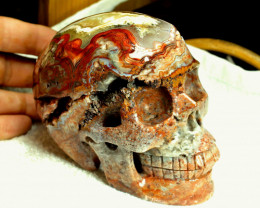 6155 Carat - 5.1 Inch - Lace Agate Skull Carving - Superb