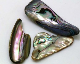 47.95 CTS ABALONE SHELL PARCEL (3PCS) ADG-1143