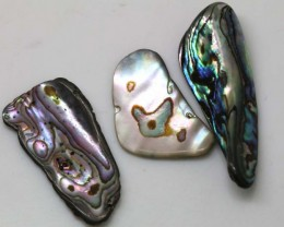 31.75 CTS ABALONE SHELL PARCEL (3PCS) ADG-1145