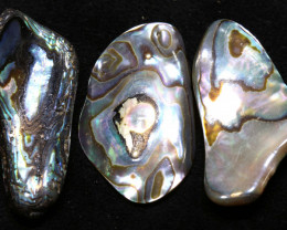 39.30 CTS ABALONE SHELL PARCEL (3PCS) ADG-1147