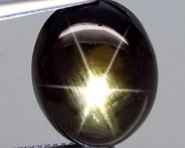20.39 Carat Black Thailand Star Sapphire