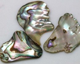 11.15 CTS ABALONE SHELL PARCEL (3PCS) ADG-1162