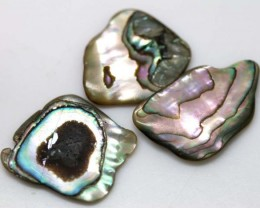 14.95 CTS ABALONE SHELL PARCEL (3PCS) ADG-1168