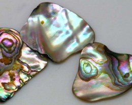 10.20 CTS ABALONE SHELL PARCEL (3PCS) ADG-1171