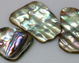 18.85 CTS ABALONE SHELL PARCEL (3PCS) ADG-1172