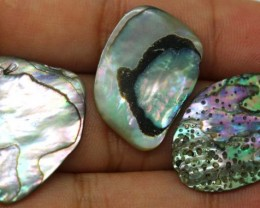 16.90 CTS ABALONE SHELL PARCEL (3PCS) ADG-1174