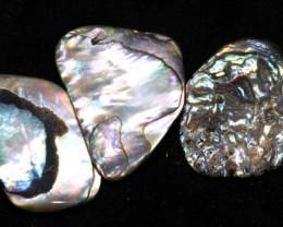 16.90 CTS ABALONE SHELL PARCEL (3PCS) ADG-1174