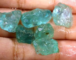 31.55 CTS APATITE ROUGH - UNTREATED RG-1655