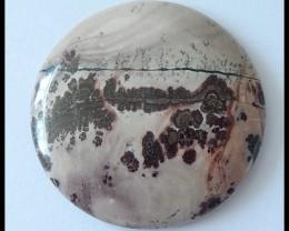 105Cts Natural Chohua Jasper Round Cabochon