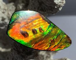 UNIQUE 3D & COLOR Change Effect BIG Natural Ammolite Gem