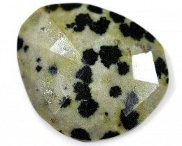 15.10 CTS FACETED DALMATION JASPER ADG-1262