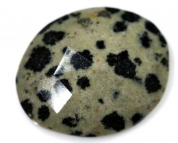 10.45 CTS FACETED DALMATION JASPER ADG-1266
