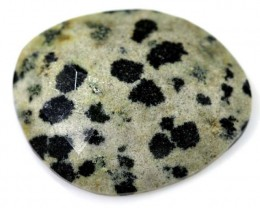 9.95 CTS FACETED DALMATION JASPER ADG-1267