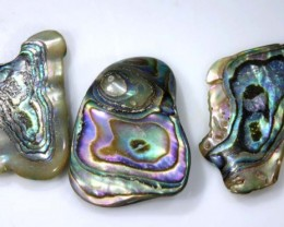 22.45 CTS ABALONE SHELL PARCEL (3PCS) ADG-1281