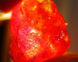 13.55Ct Natural Madagascar Mined Red Ruby Rough