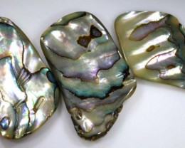 32.65 CTS ABALONE SHELL PARCEL (3PCS) ADG-1336